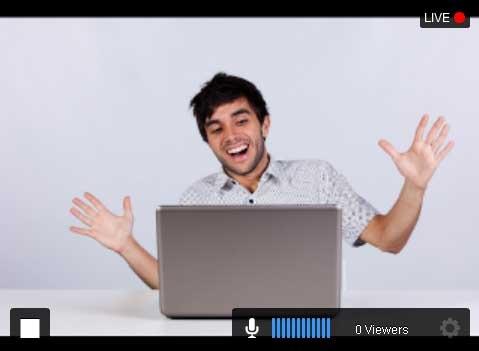 Justin TV SplitCam