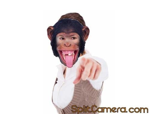 Monkey Mask Effect